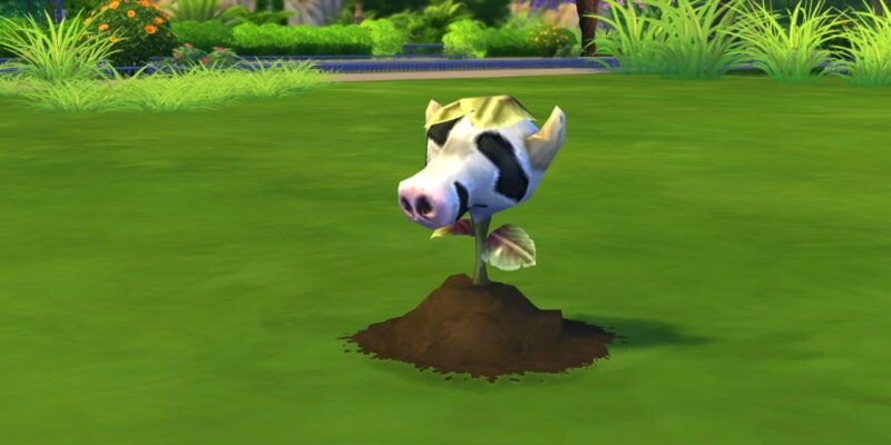 Bored With Sims Our Sims 4 Fun Things To Do List Has The Solution
