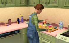 Sims 3 Cooking Guide