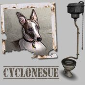 Cyclonesue Toilet Feature